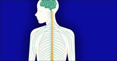 Vagus Siniri: Sağlıklı ve Uzun Yaşamın Sırrı